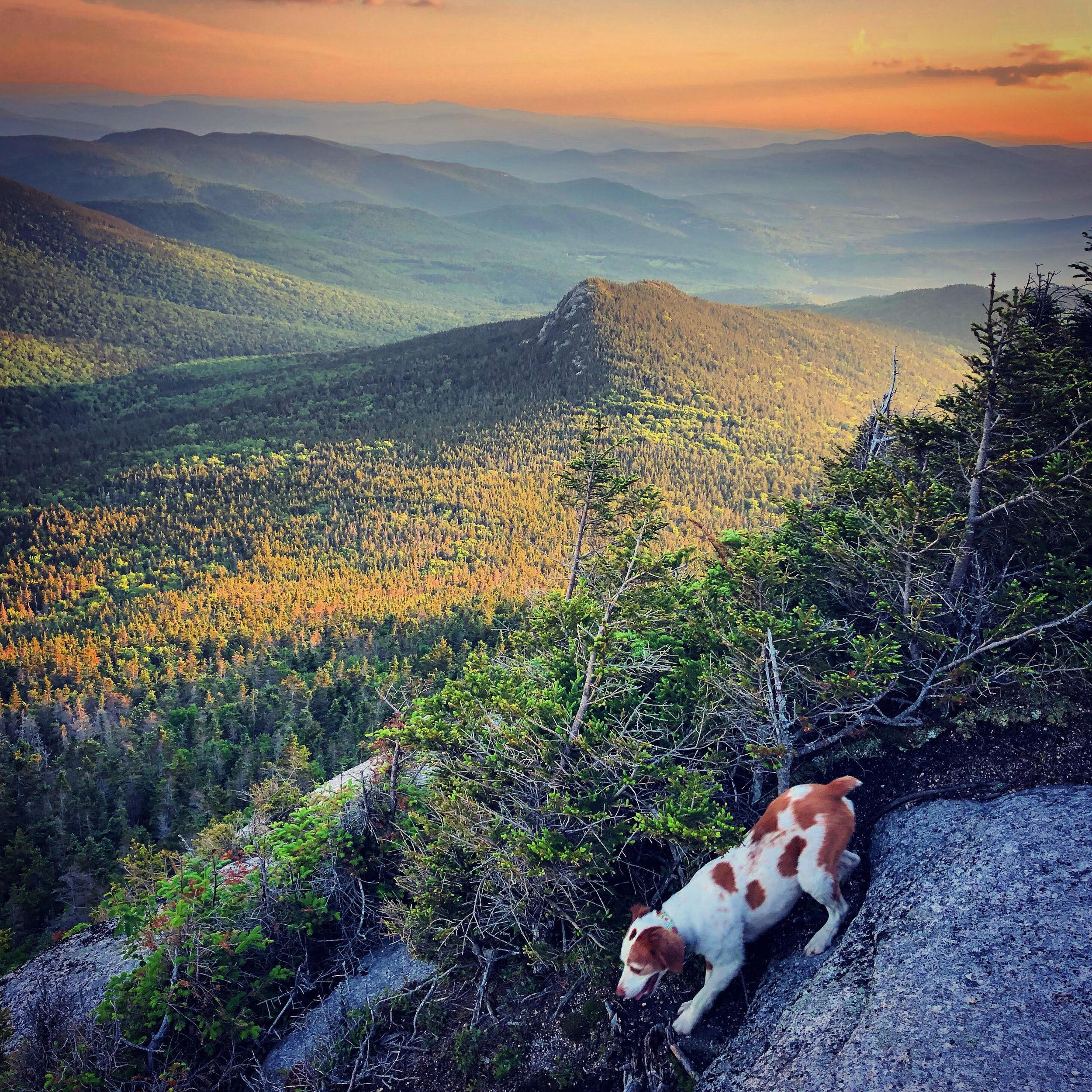 Another Jennings Peak sunset capture