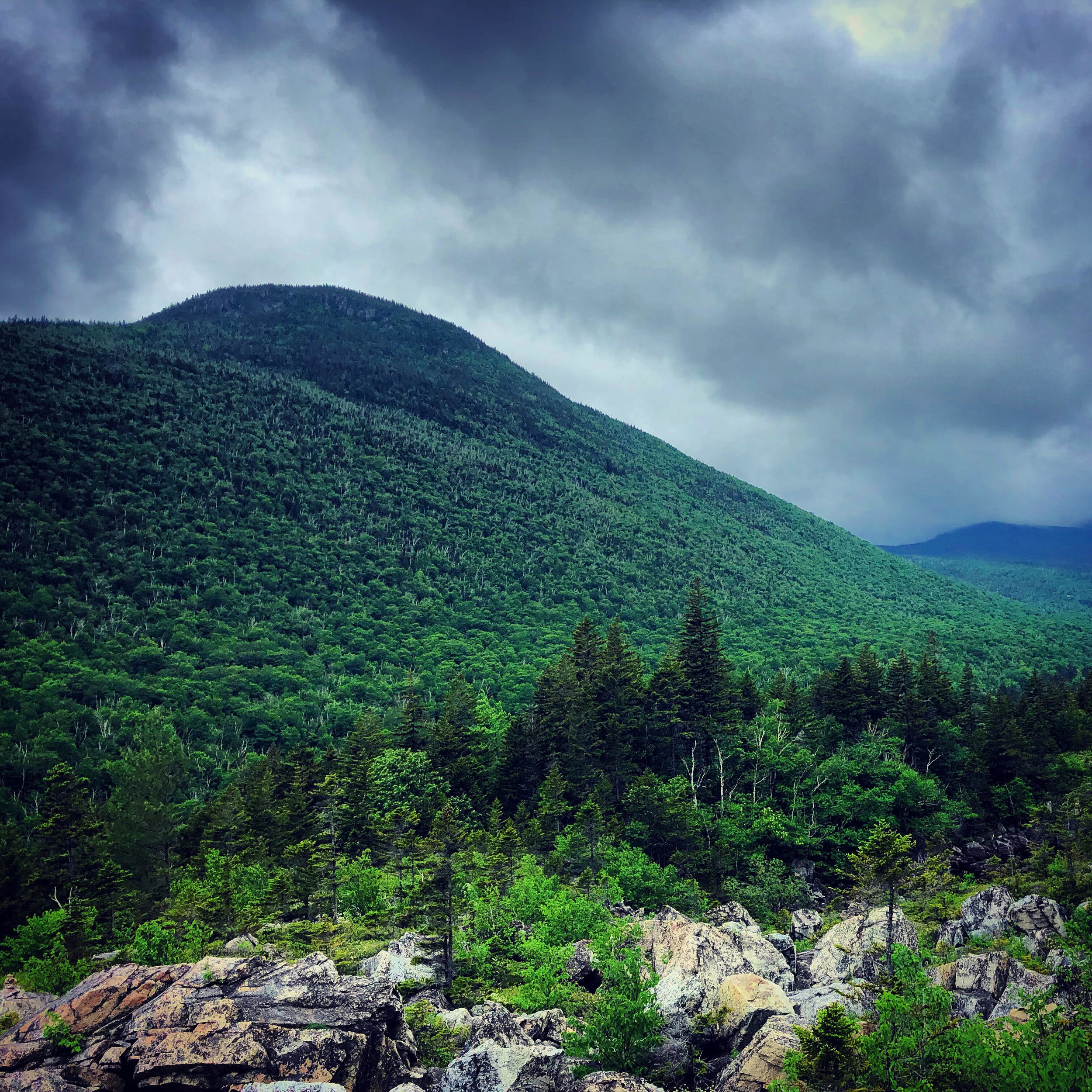 Zeacliff from the Ethan Pond Trail