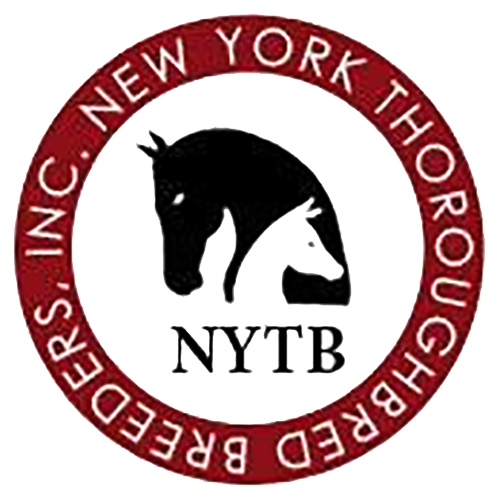 As Seen - NY Breeders.png