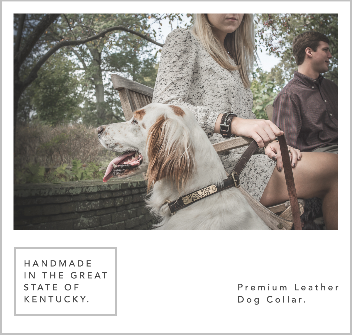 Product - Dog Collar.png