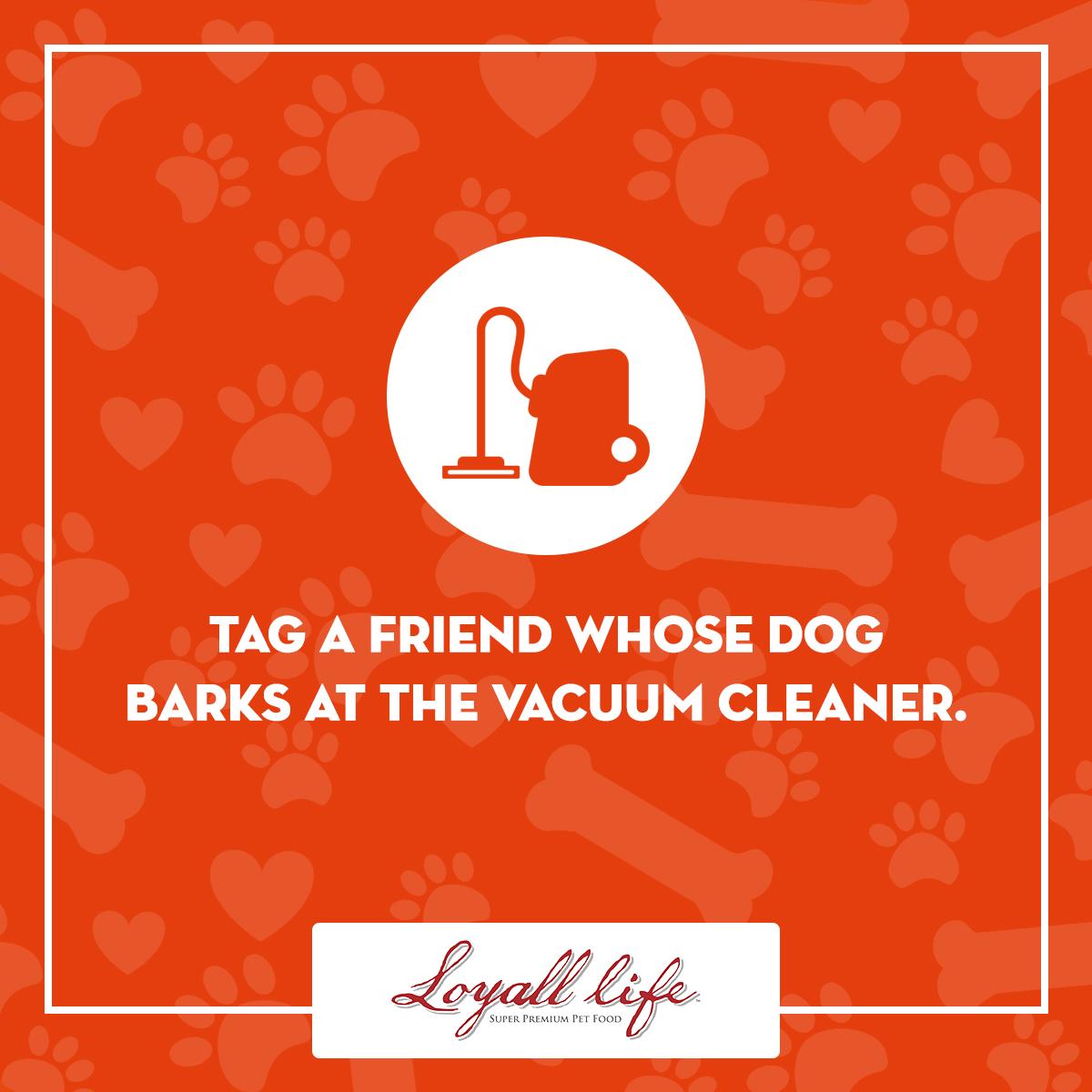 Tag a Friend - Vacuum Cleaner.jpg