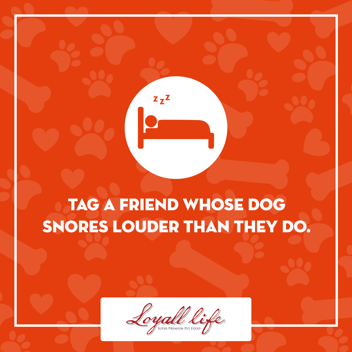 Tag a friend - dog snores.jpg