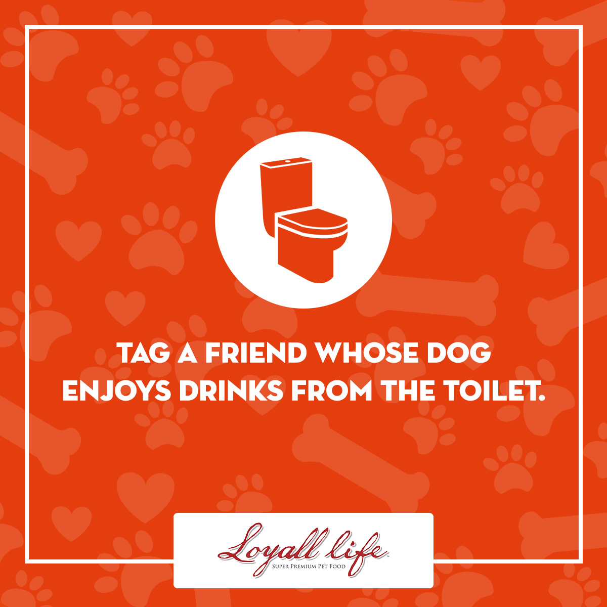 Tag a Friend - Drinks from the toilet.jpg