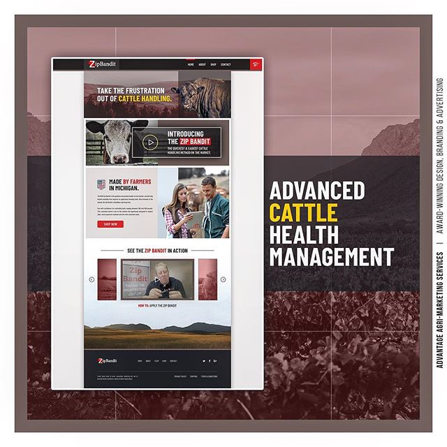 We are excited to partner with ZipBandit, a provider of advanced cattle health and herd management products. Founded by farmers in Michigan. Website, digital strategy, print and more on the way! 🐮