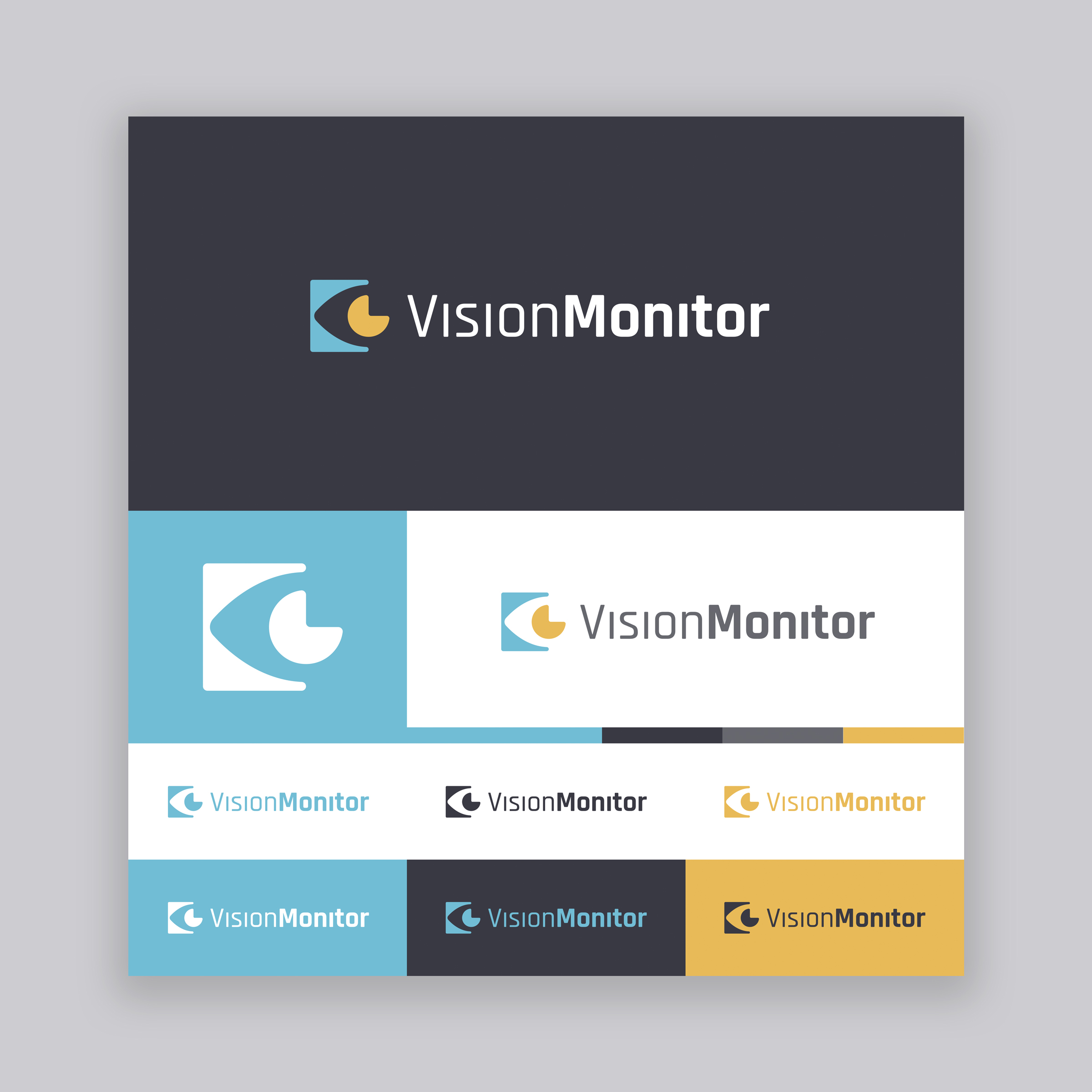 Vision Monitor Logo - Option 2.jpg