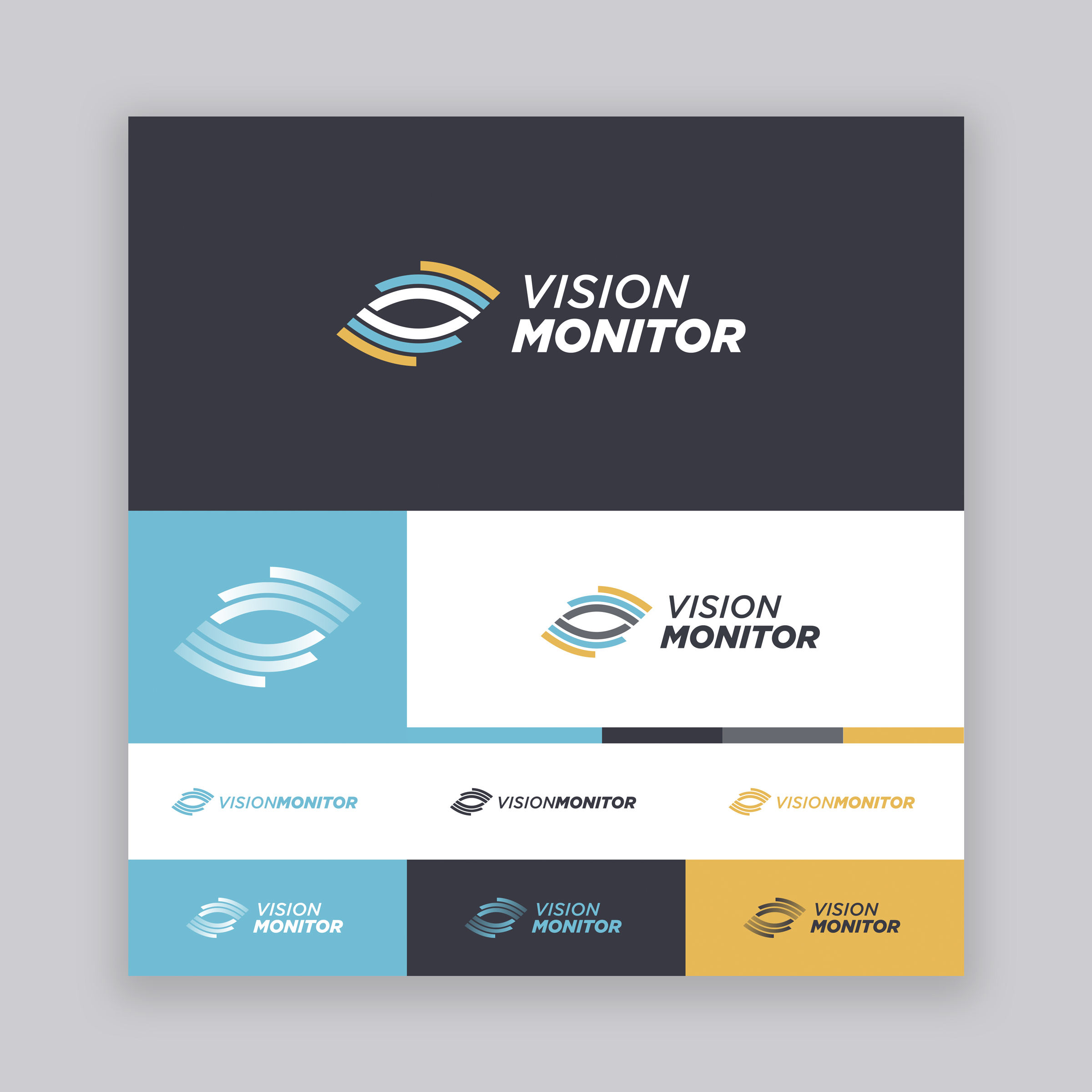 Vision Monitor Logo - Option 3.jpg