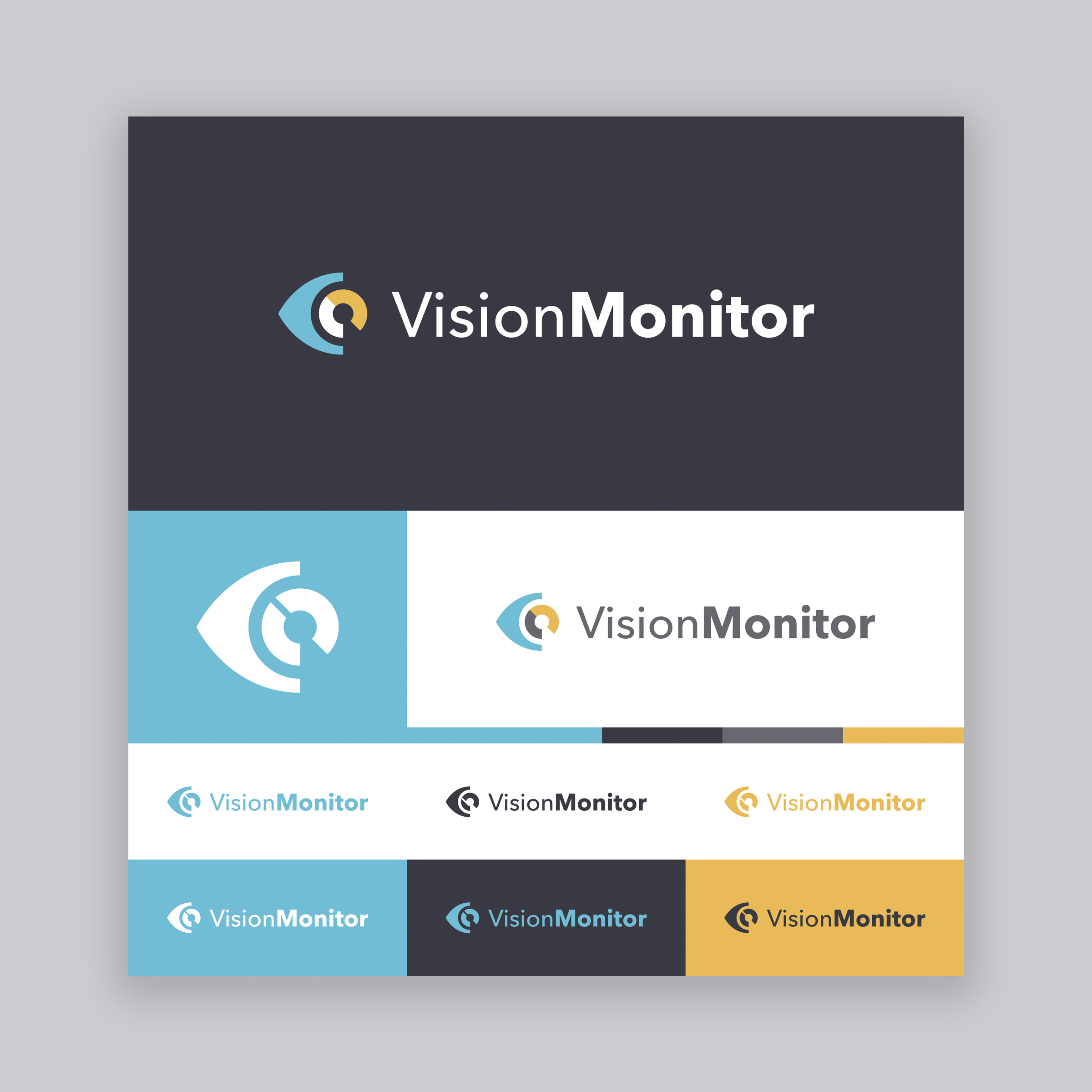 Vision Monitor Logo - Option 4.jpg