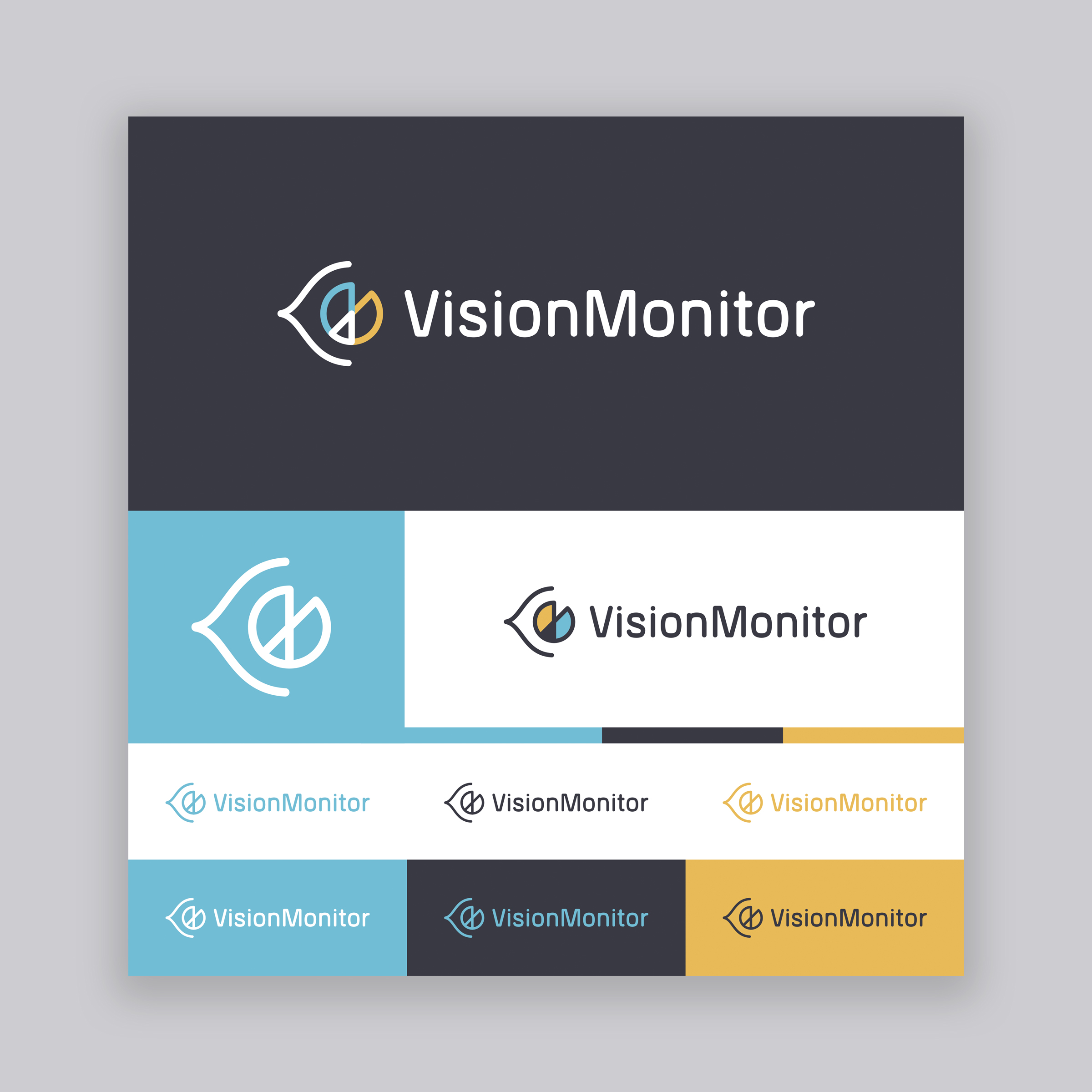 Vision Monitor Logo - Option 5.jpg