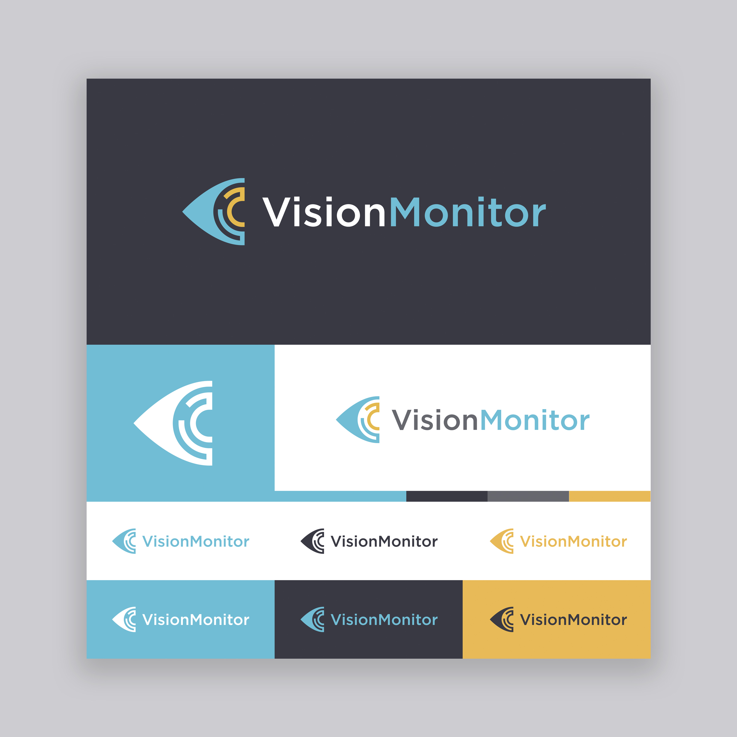 Vision Monitor Logo - Option 6.jpg