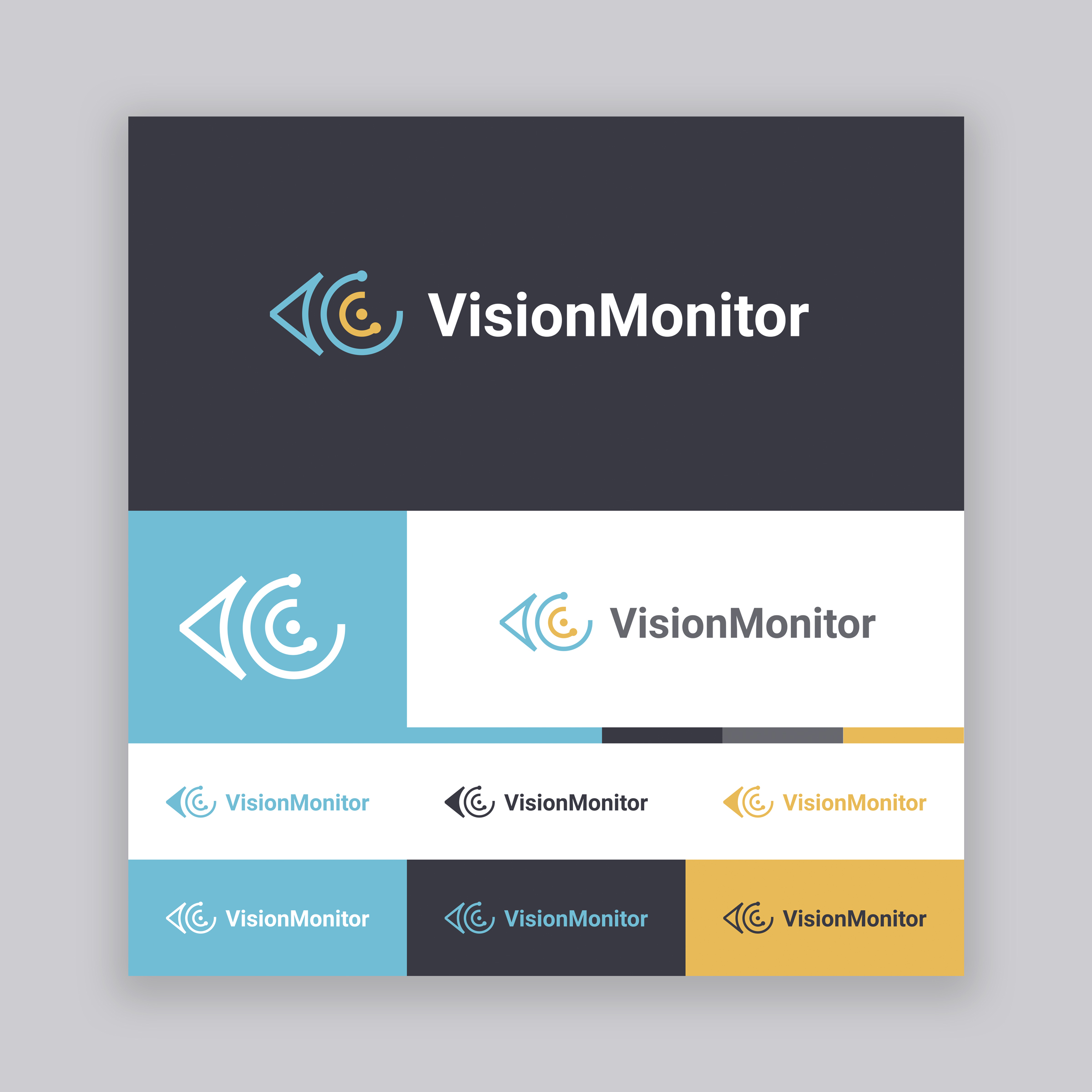 Vision Monitor Logo - Option 7.jpg