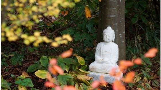 Buddha & leaves.jpg