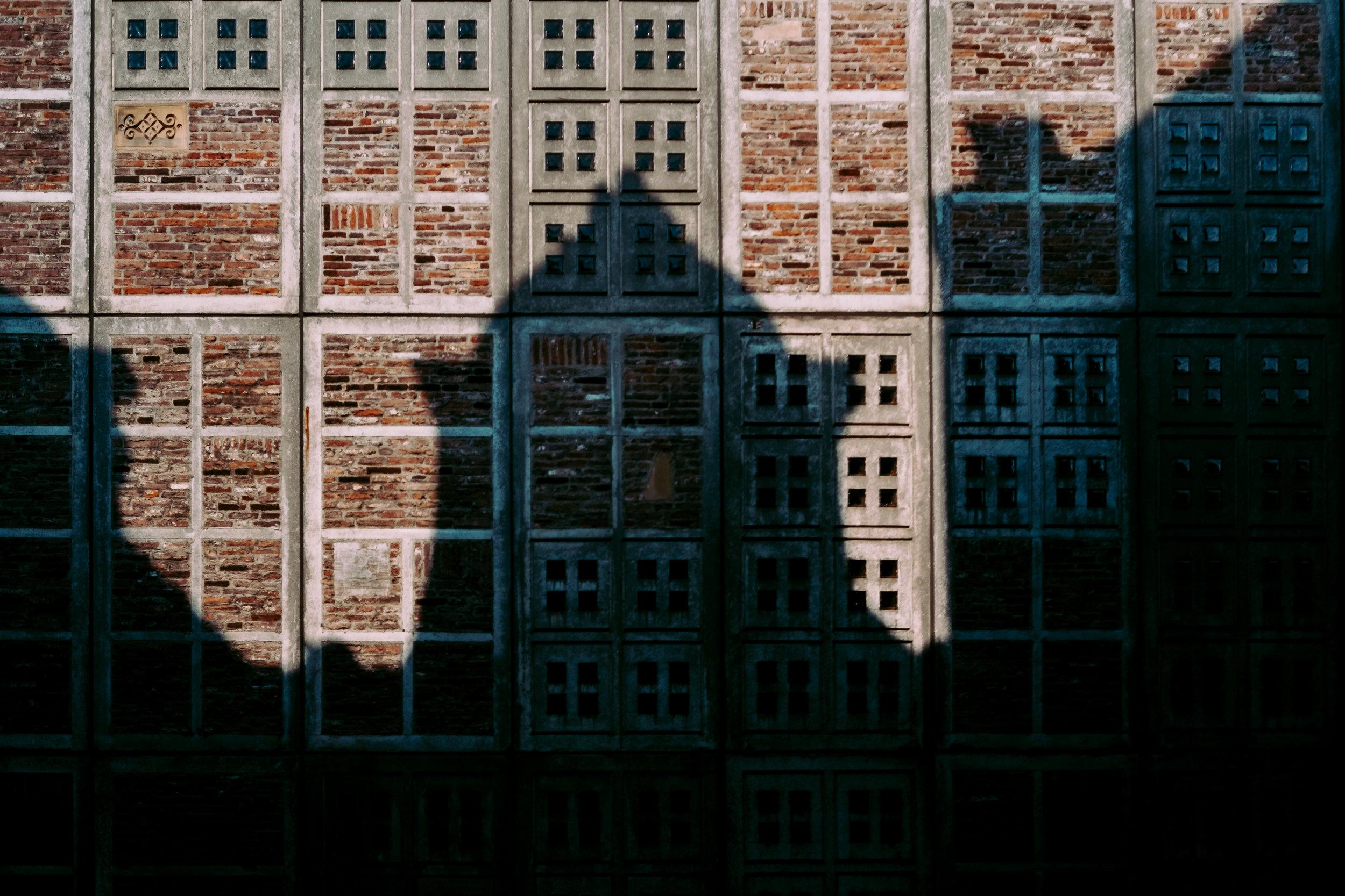 Amsterdam shadows