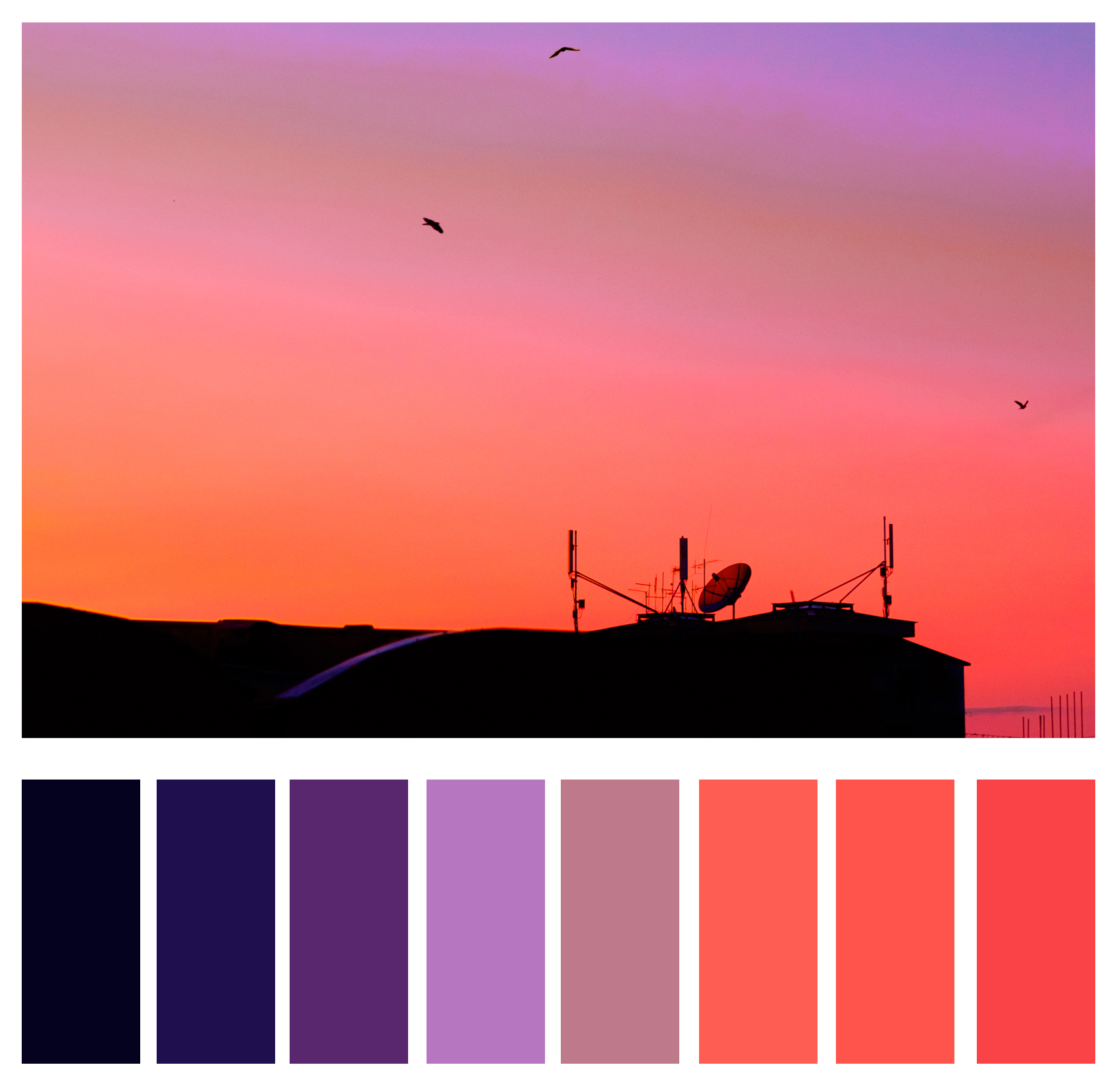 Figure 1c: Tertiary colors are often used to create visual interest and make for other-worldly vibes.
