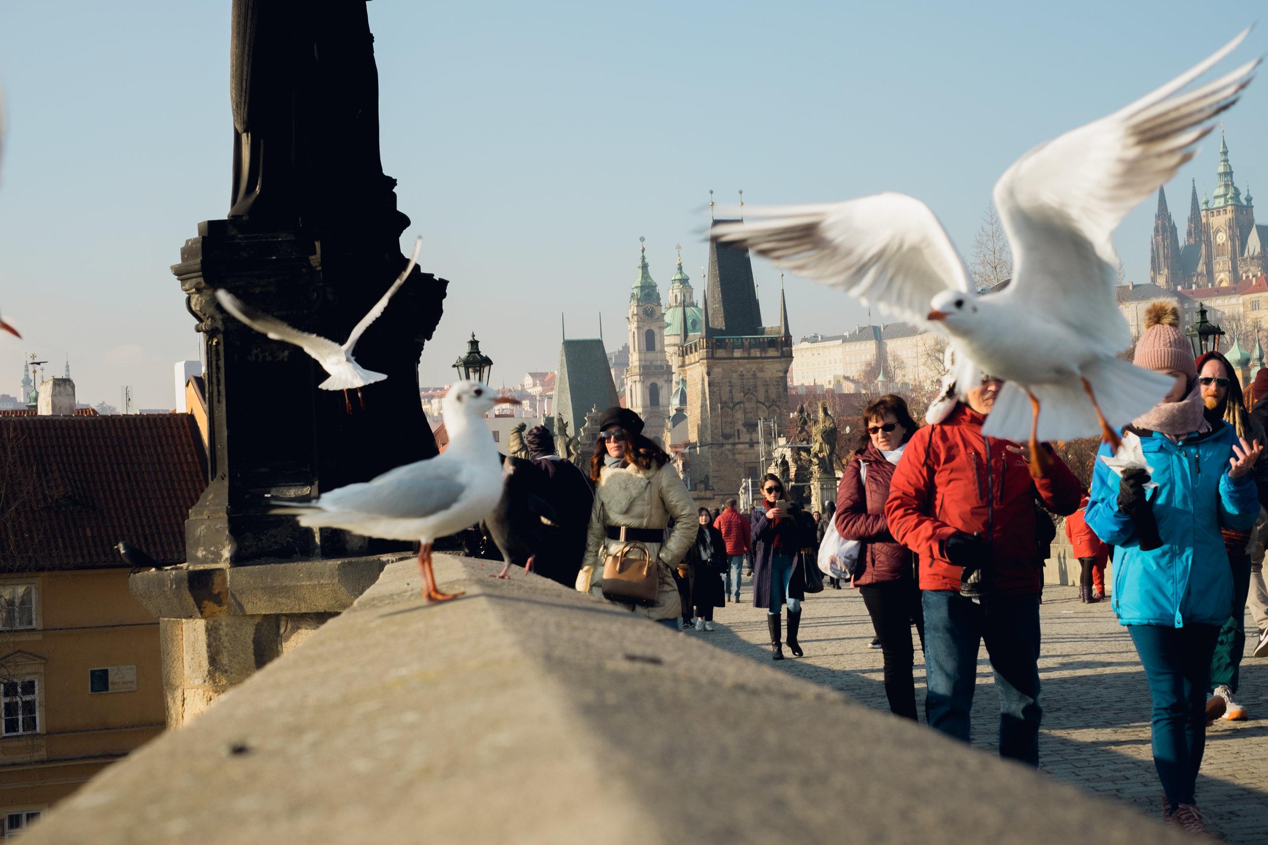 Prague Street Photography (34 of 40).jpg