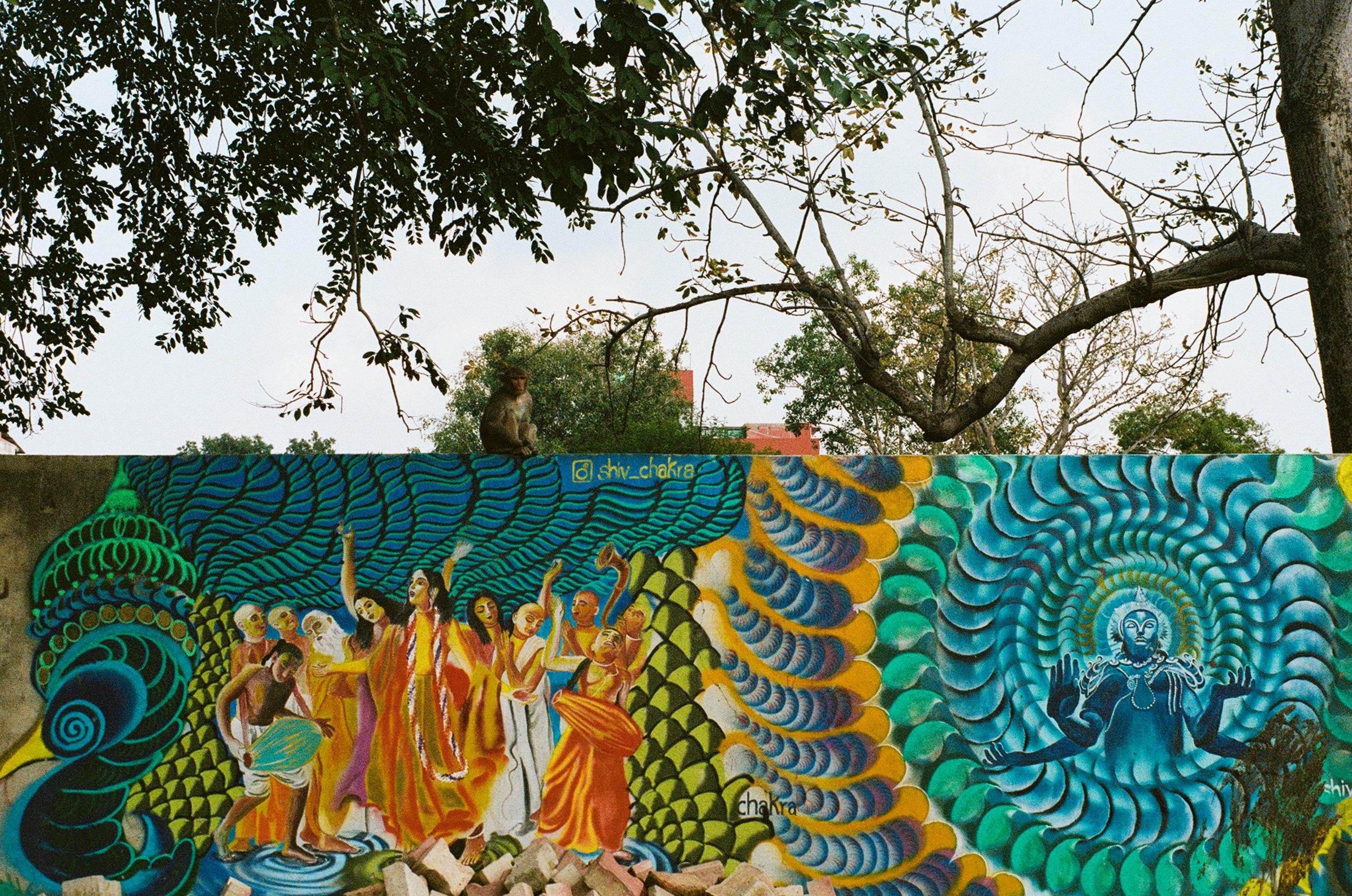 Vrindavan India Portra 400 Minolta X-700 (13 of 65).jpg