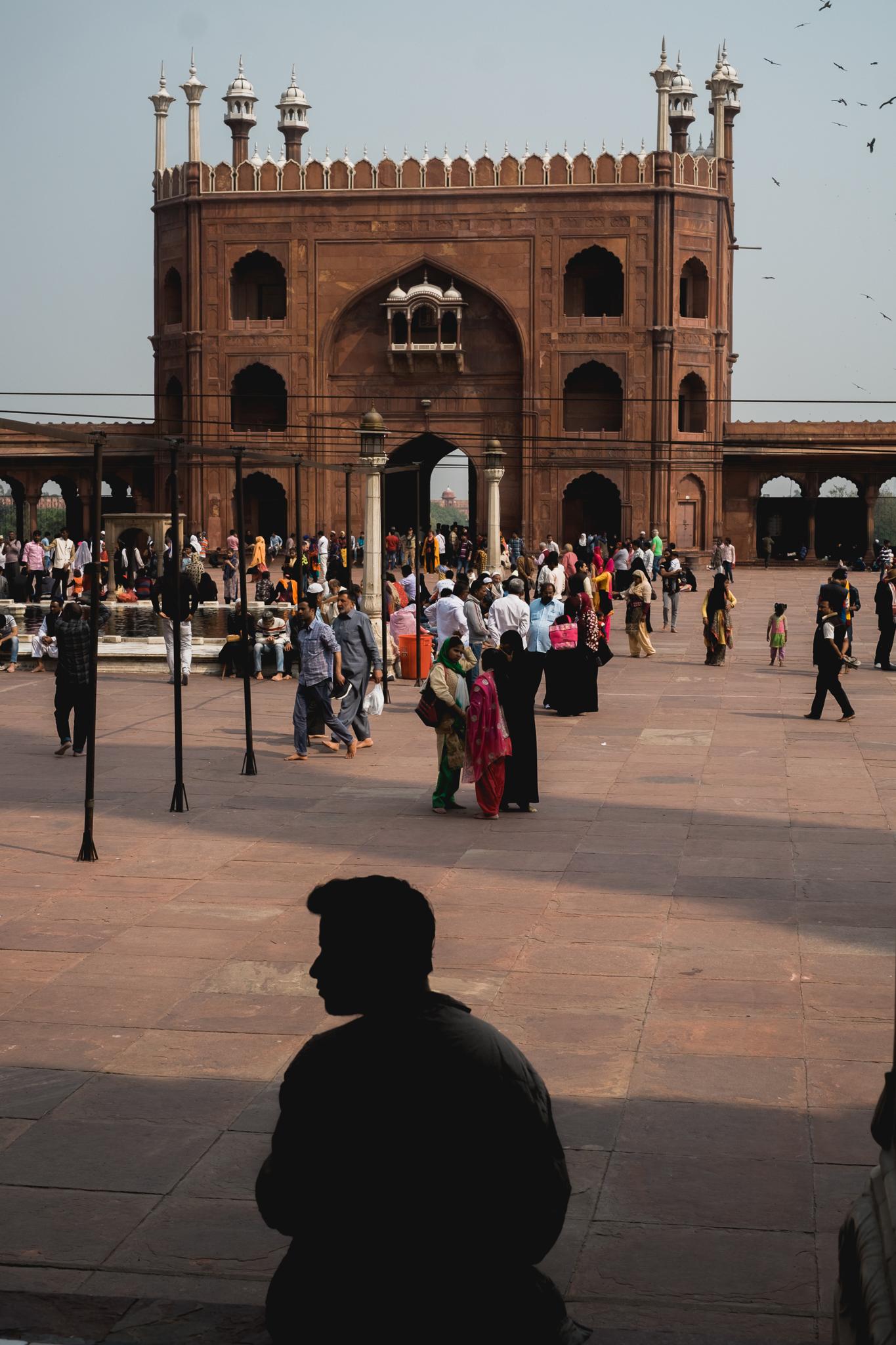 Delhi India Travel Street Photography (4 of 47).jpg