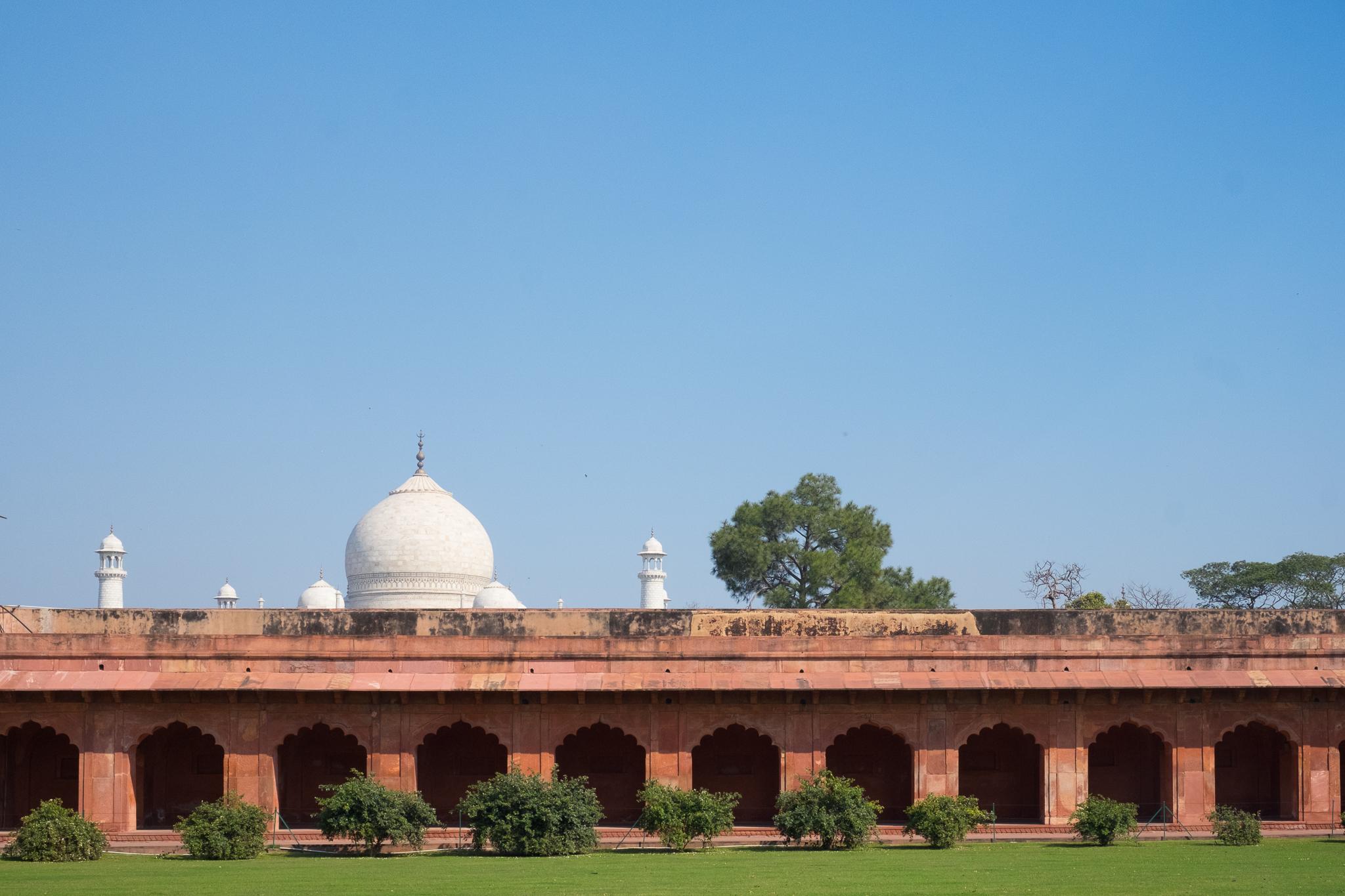 Agra India Travel Street Photography (14 of 39).jpg