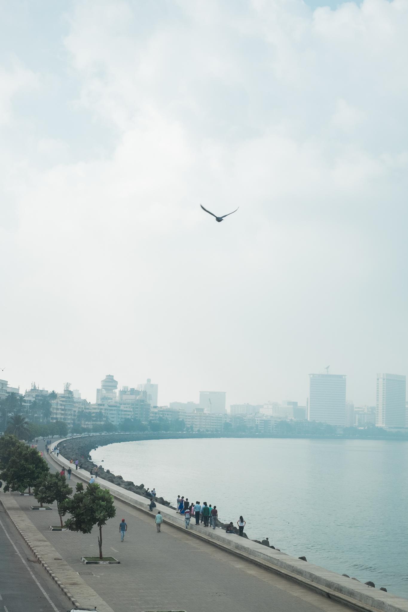 Mumbai India India Travel Street Photography (32 of 55).jpg
