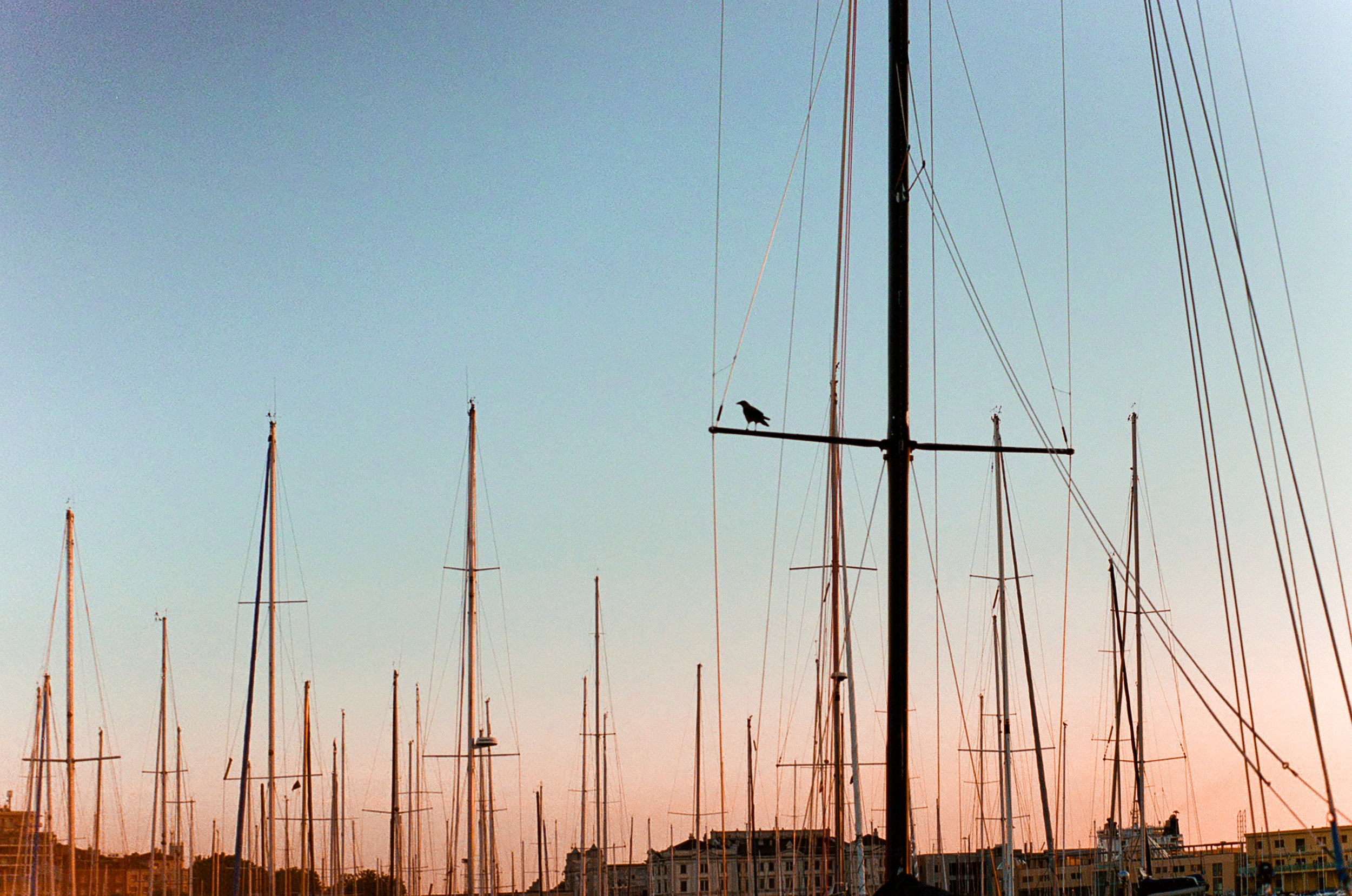 Trieste Street Photography-28.jpg