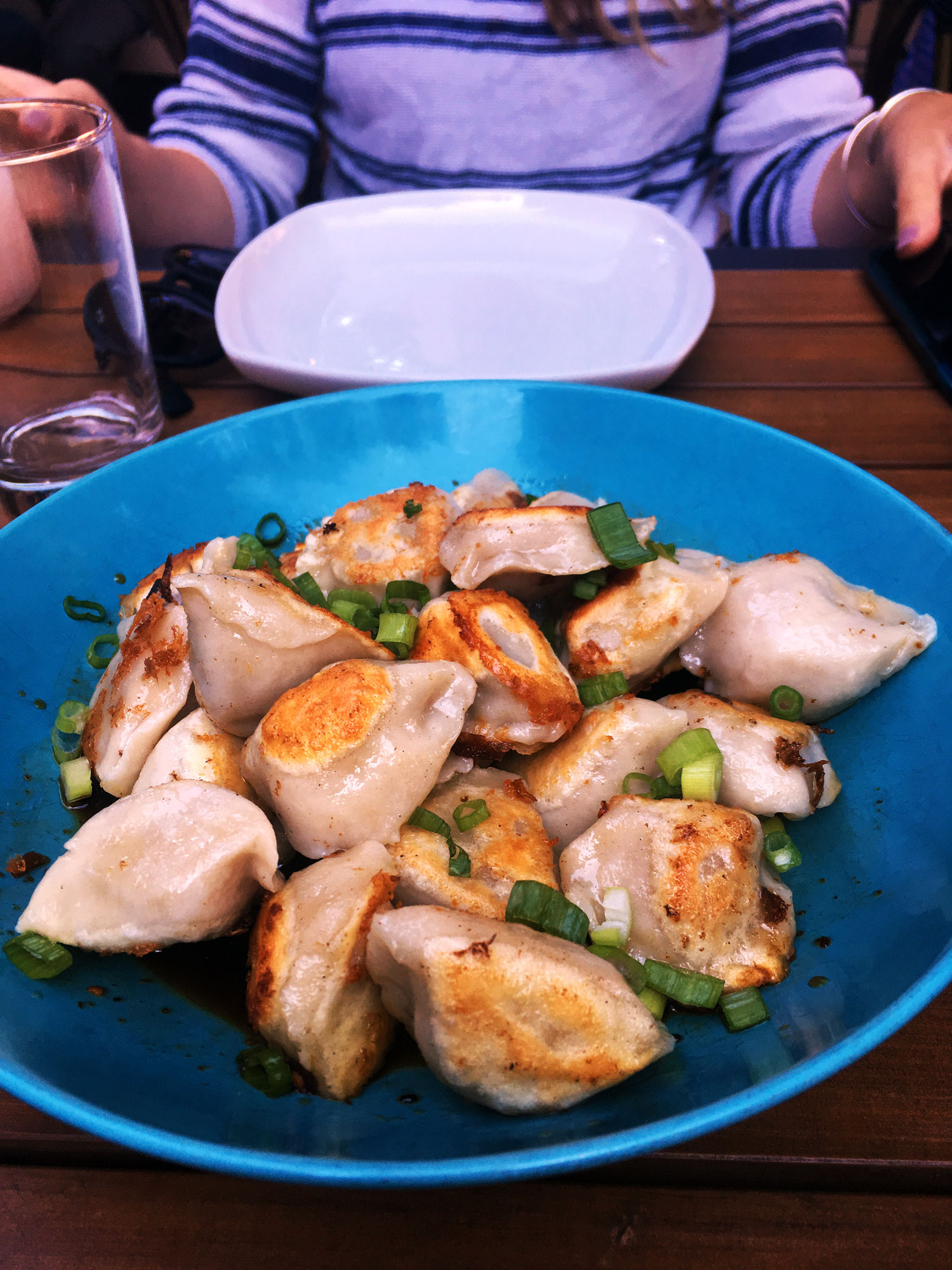 I caught up with friends over 48 dumplings at  Banyan Bar + Refuge  in the South End in Boston. From 4-6pm, dumpling orders are $1...for 2 dumplings! We couldn't stop. They're delicious.