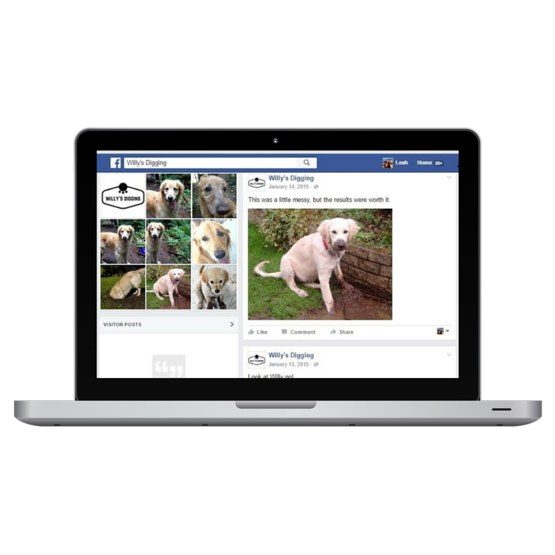 facebook posts for business