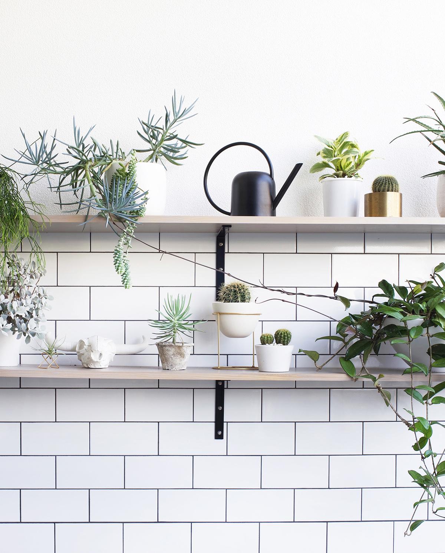 Adore editor Loni Parker's courtyard shelves