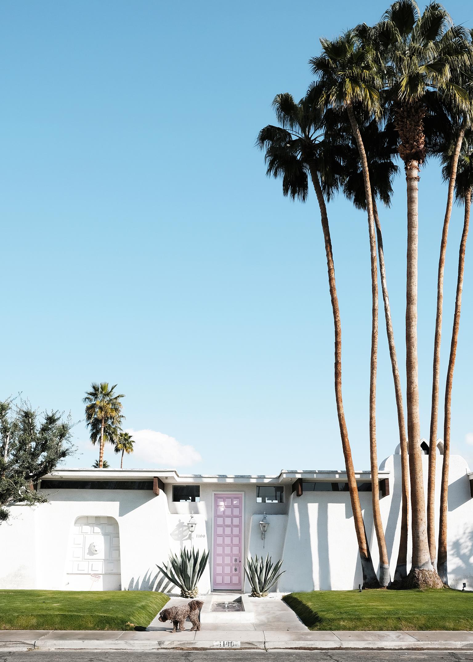 adore_home_blog_palm_springs_that_pink_door_.jpg