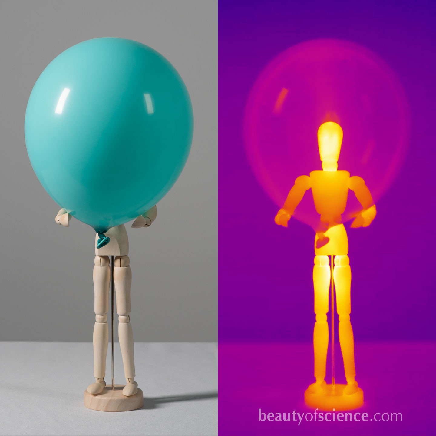 A balloon which is opaque in the visible light becomes transparent in thermal imaging.