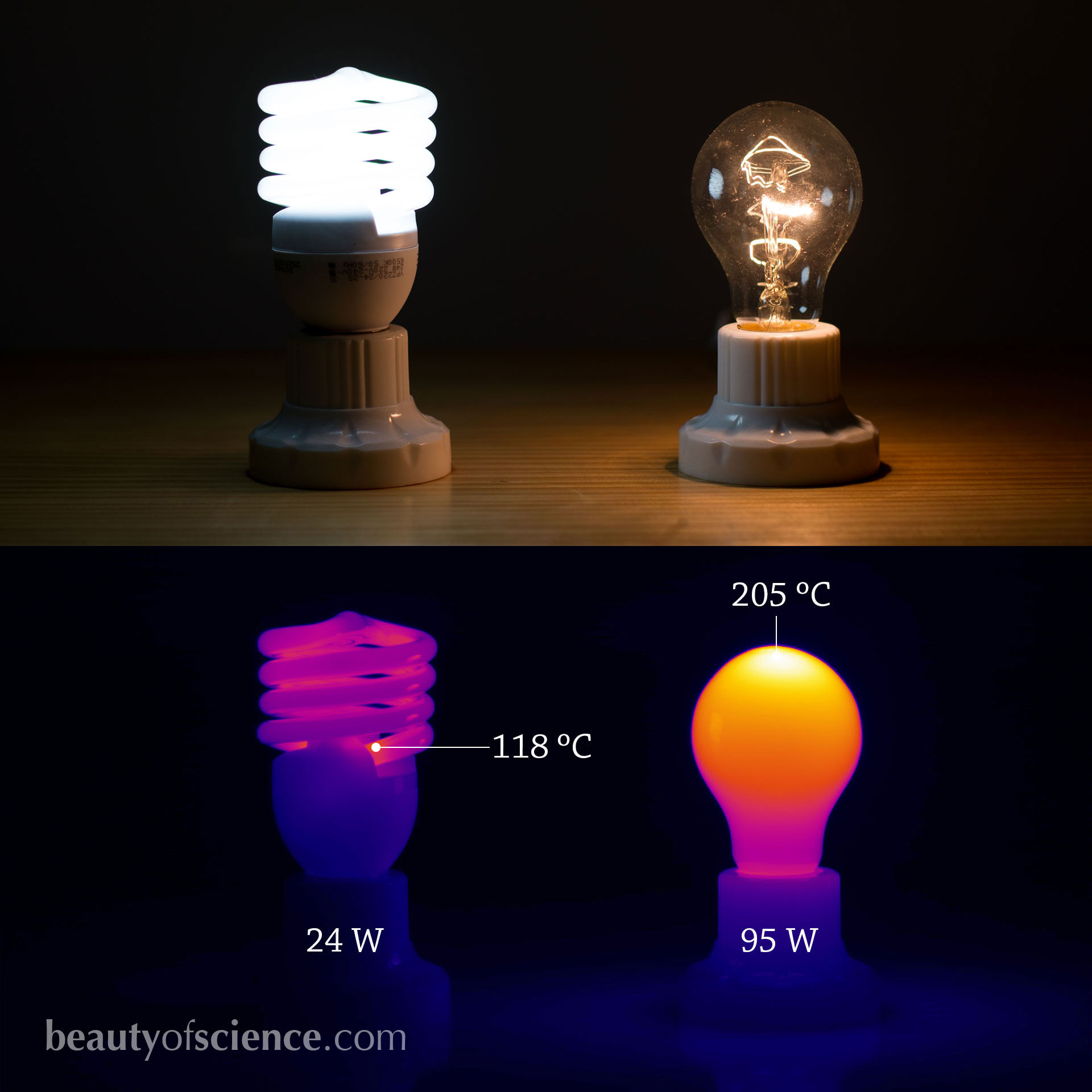 Comparison of fluorescent and incandescent light bulbs, both in the visible light and by using infrared thermal imaging.
