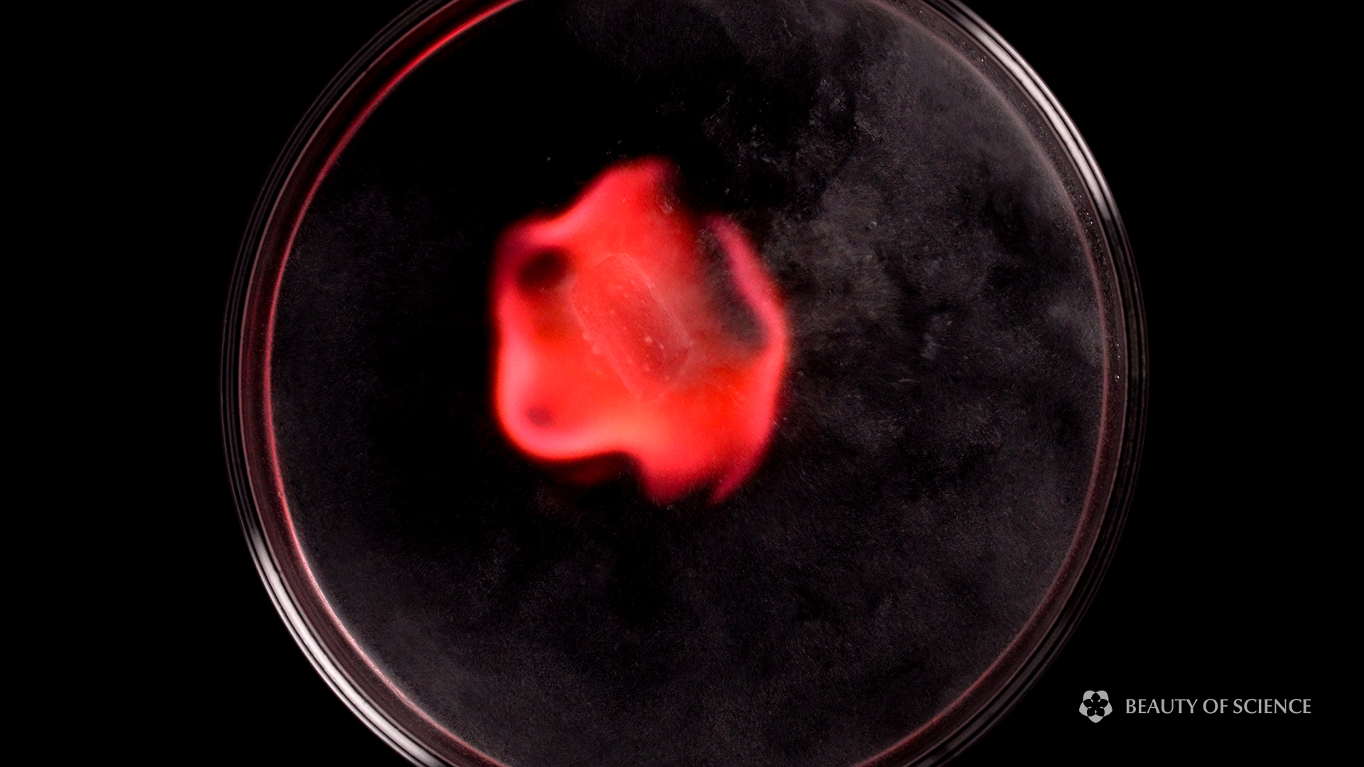 Combustion of hydrogen generated by the reaction between lithium and water