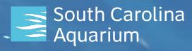 Two General Admission passes to the South Carolina Aquarium - $60 Value