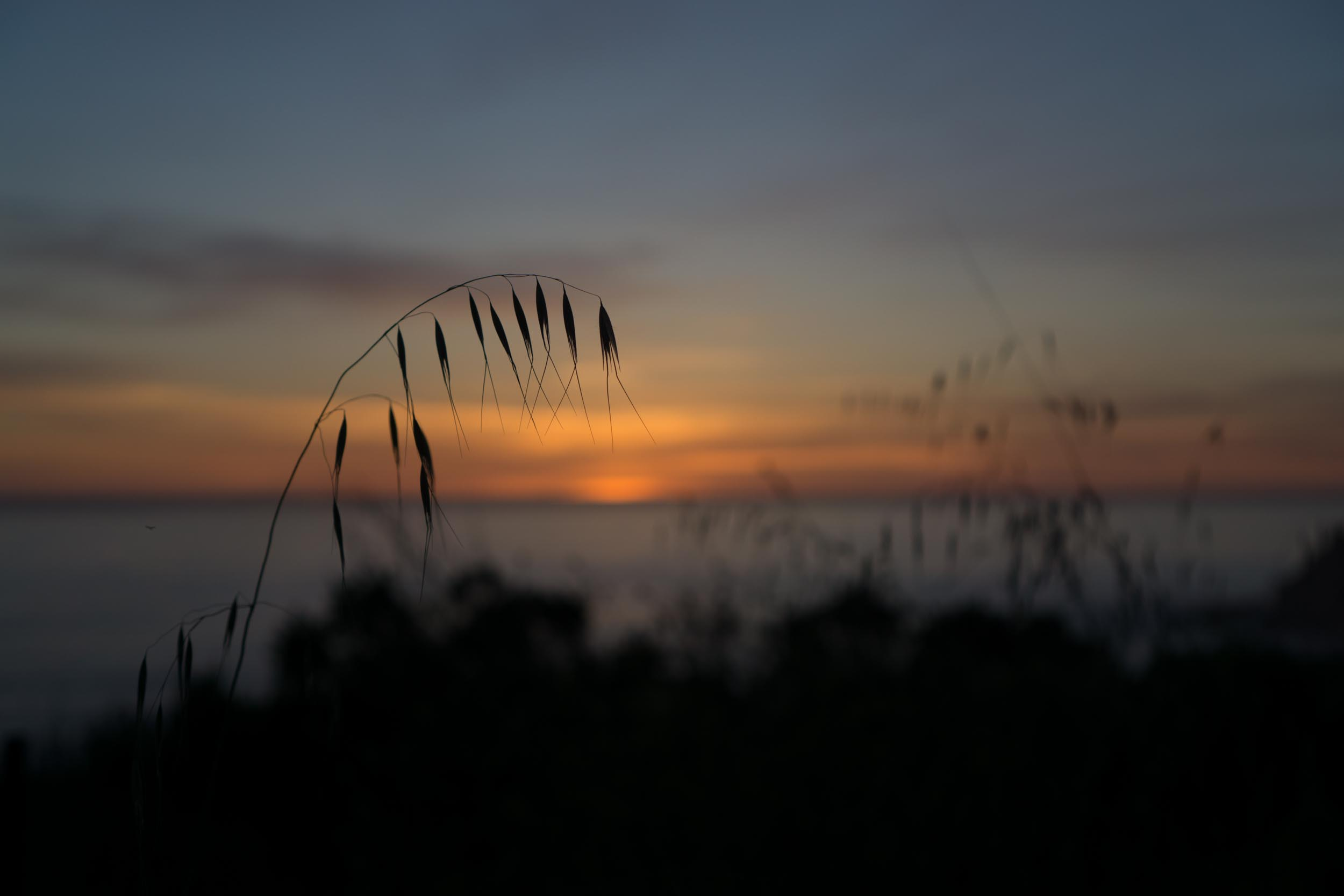 g'night Big Sur