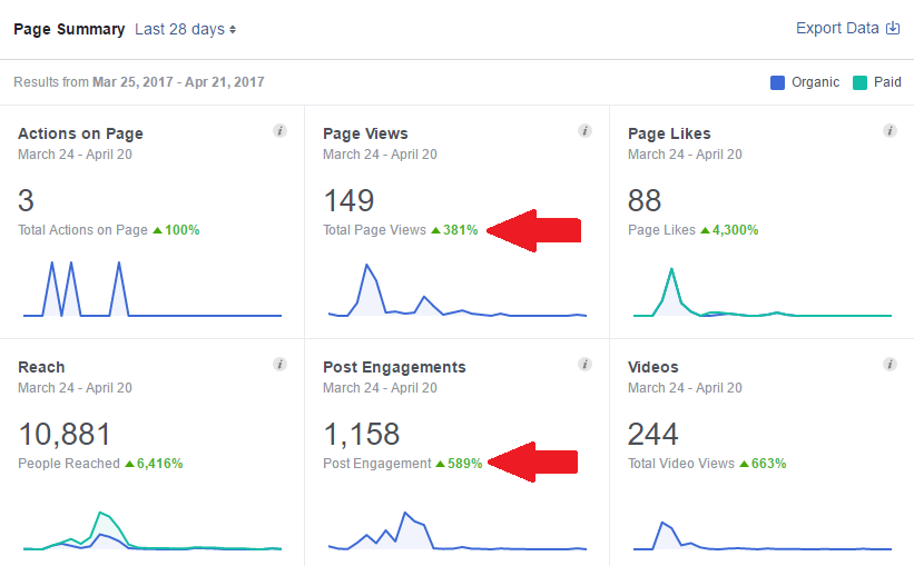 Facebook Page Insights - First 28 days after page was optimized and active