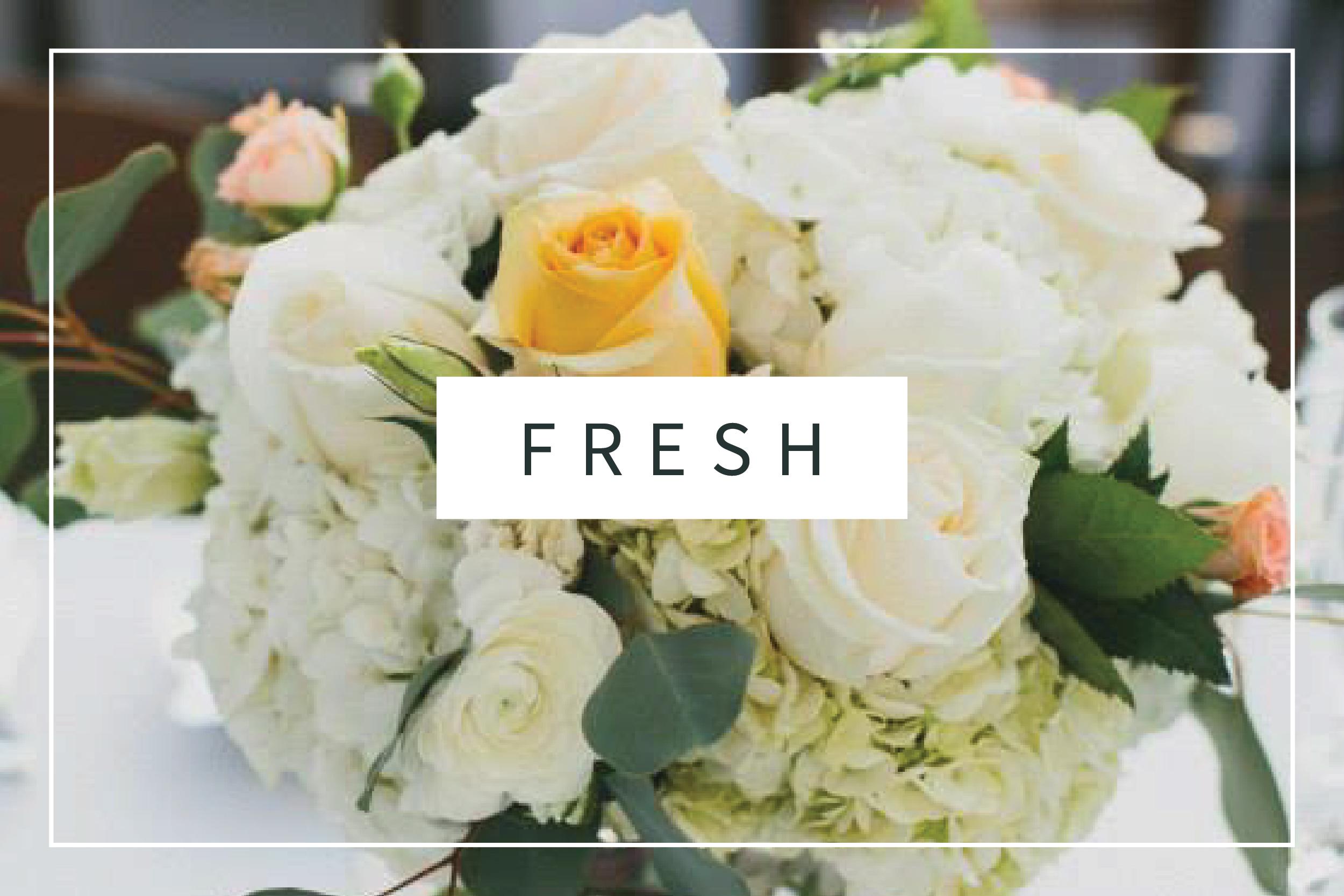 fresh thumnail-01.jpg
