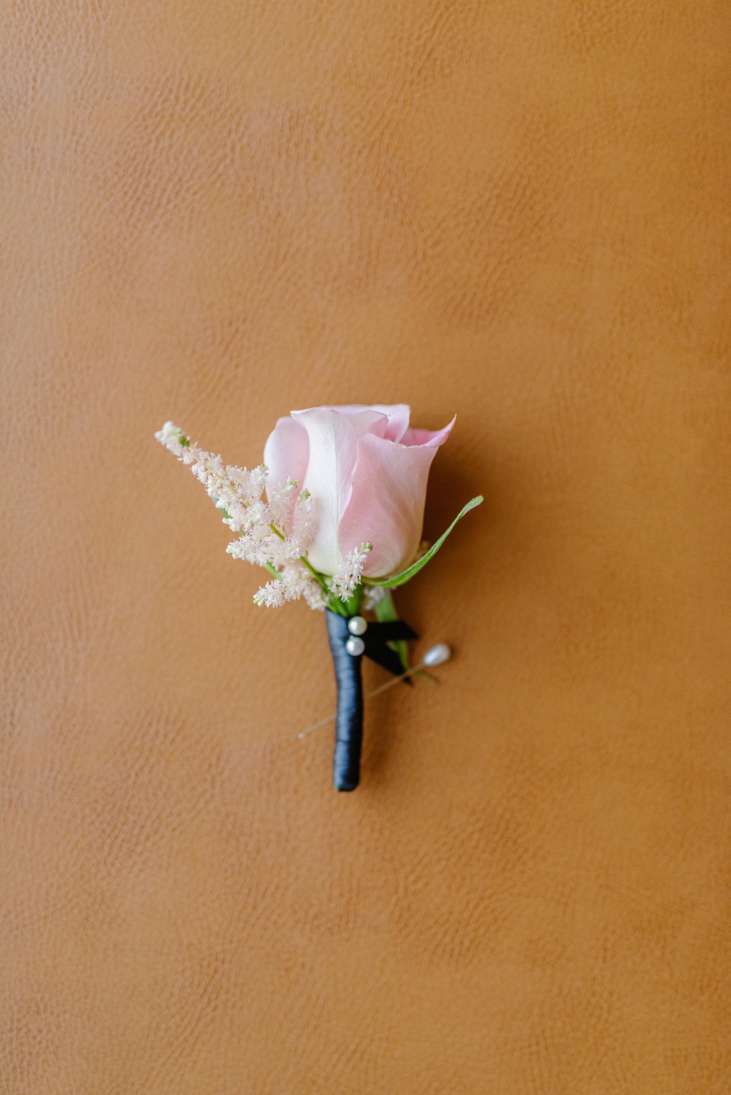 photo courtesy of LovisaPhoto.com