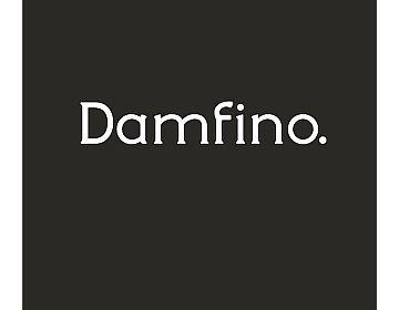 Damfino.jpg