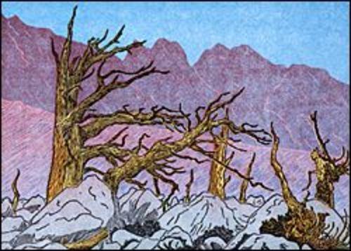 Chagoopa Plateau