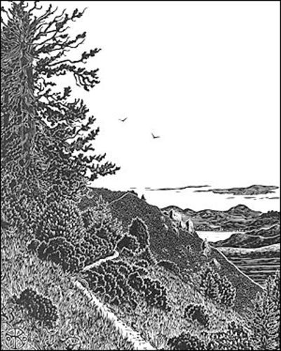 Lone Tree, Dipsea Trail