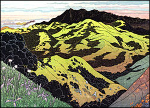 Mt. Tamalpais from Big Rock Ridge
