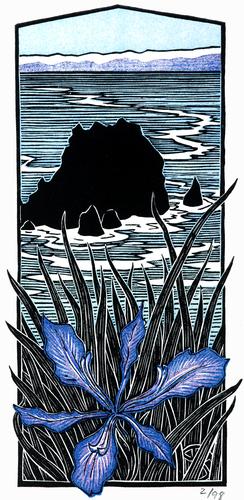 Wild Iris, Chimney Rock (Pt. Reyes)