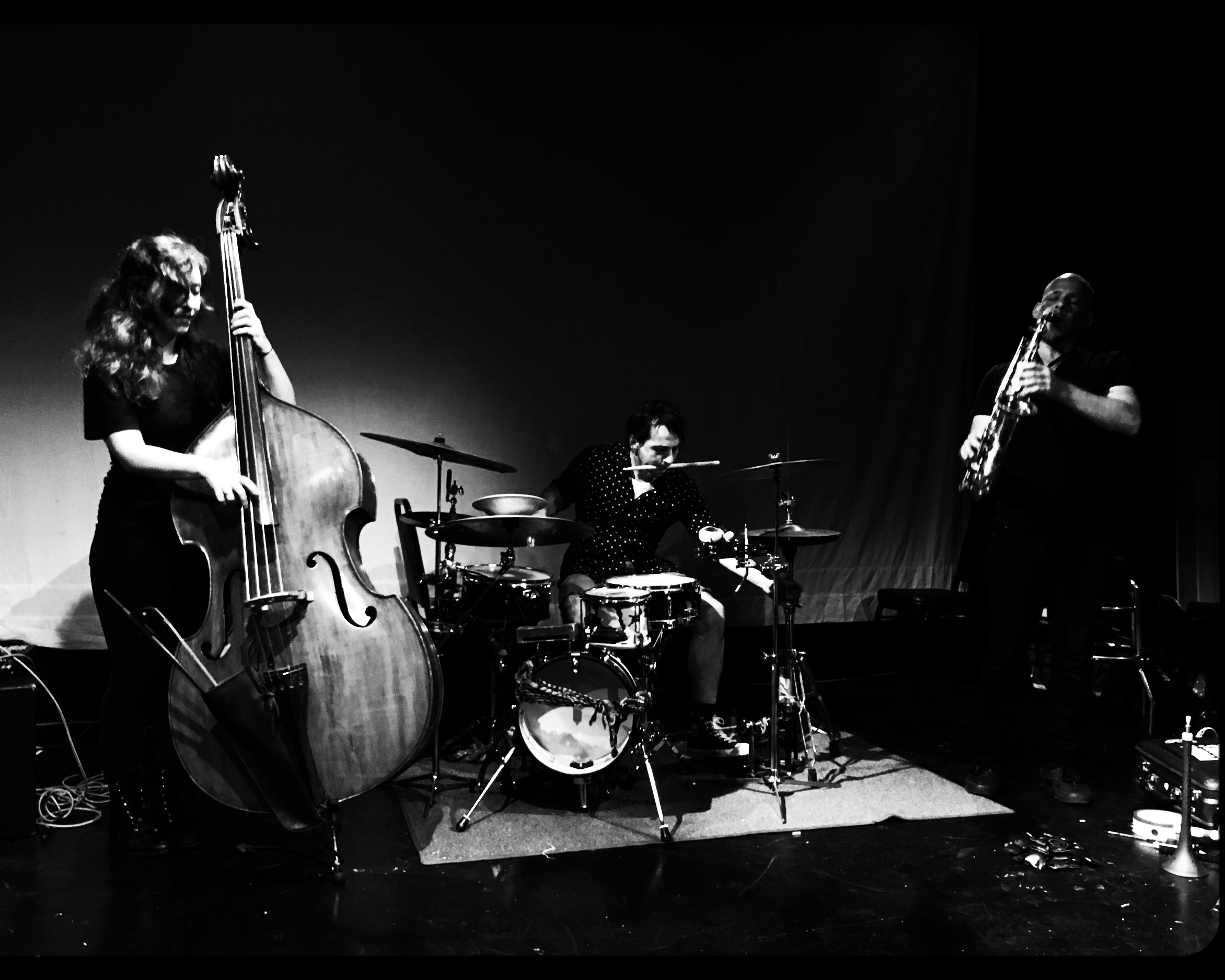 DROMEDARIES - Phila/NYC // 2014-Keir Neuringer - saxophoneShayna Dulberger - bassJulius Masri - drums