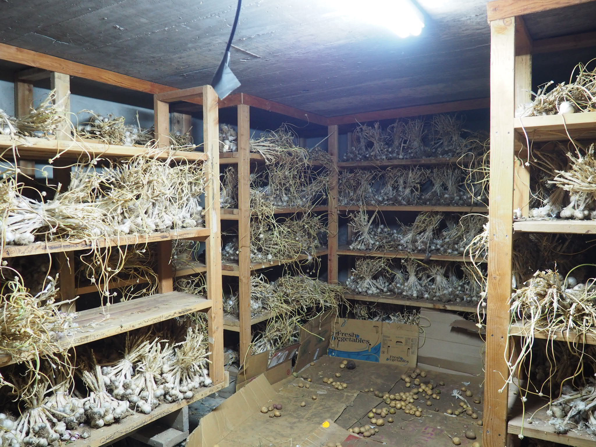 GARLIC ROOM. Photo by Jackie Bryant.