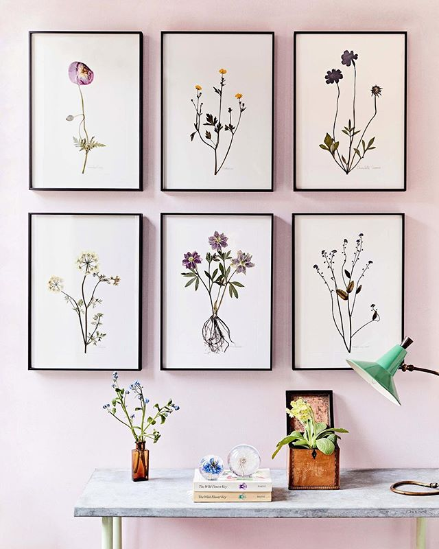 Friday is for flowers 🌸 these stunning botanical pressings are made by the @jamjar_edit team & are for sale on their website. Styling by the lovely @florence_rolfe 📷 by me @emmaguscott
