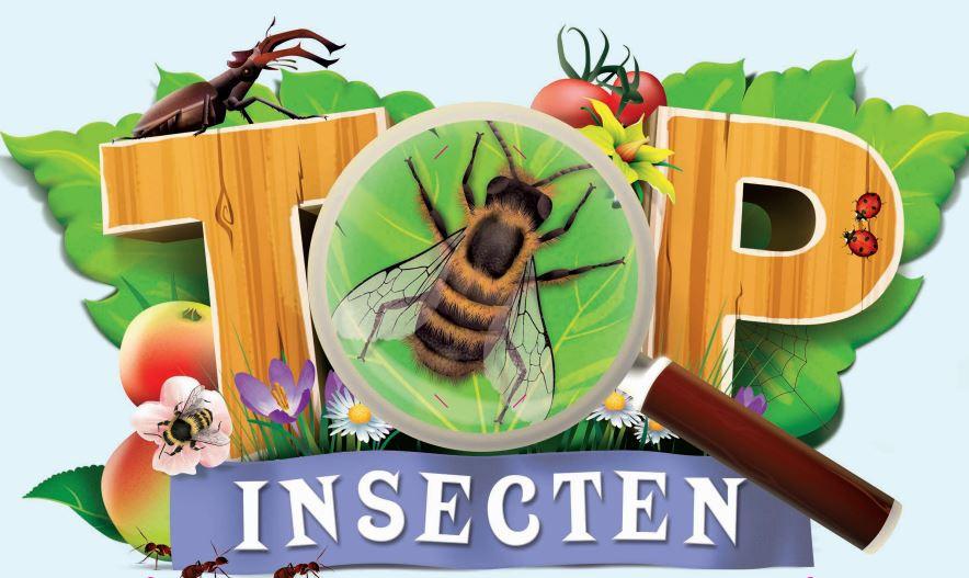 ah insecten app.png