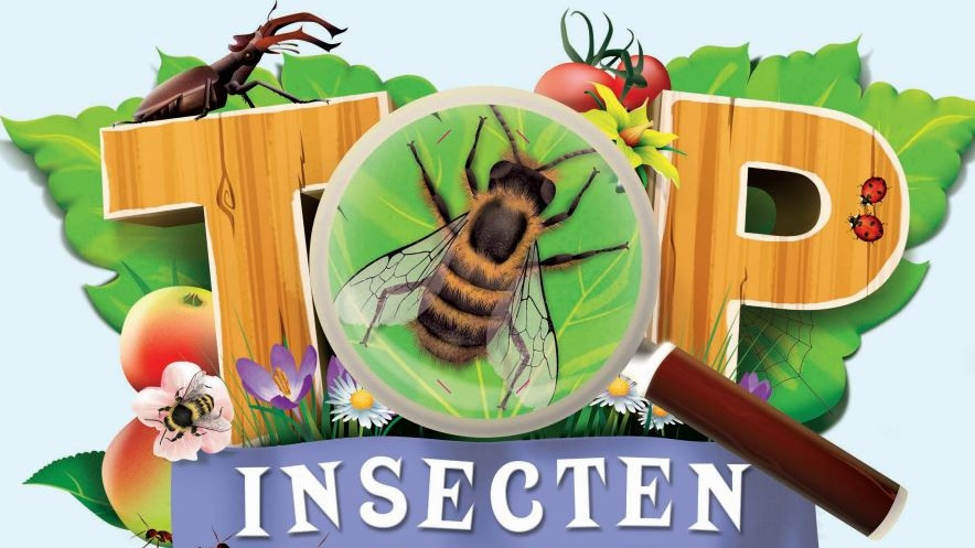 Albert Heijn 'Insecten' -