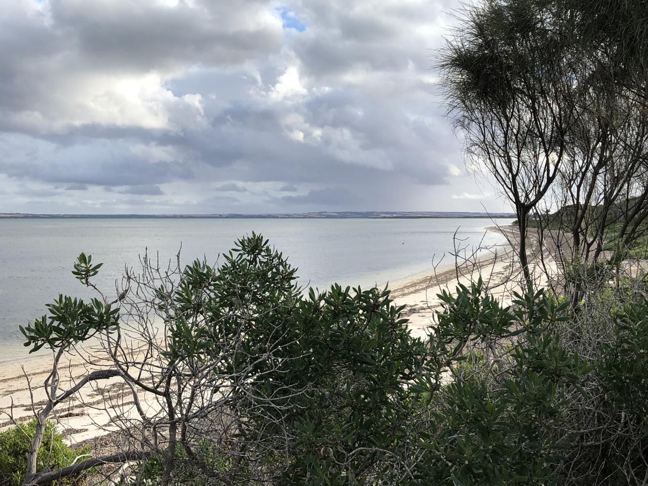 Beach walk 2.jpg