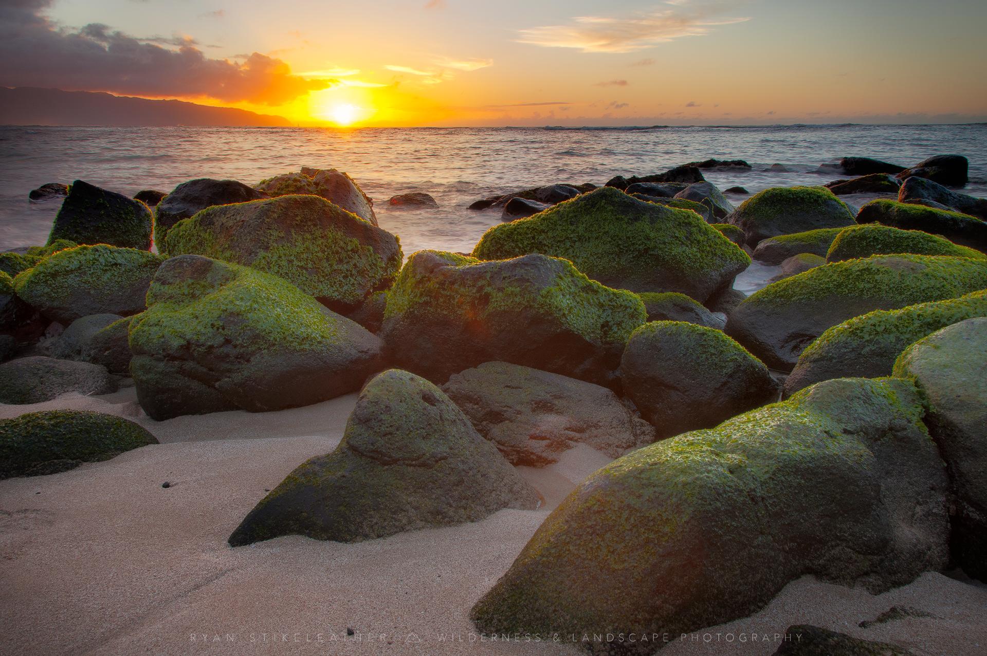 Sunset on Laniakea Beach—photo   by   Ryan Stikeleather
