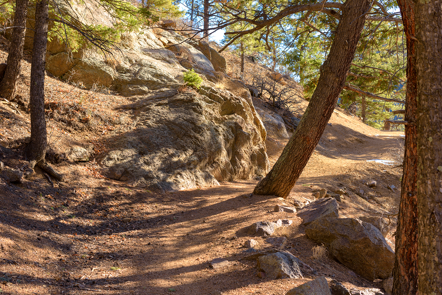 BTP_NCC_Upper_Columbine_Trail_4.jpg