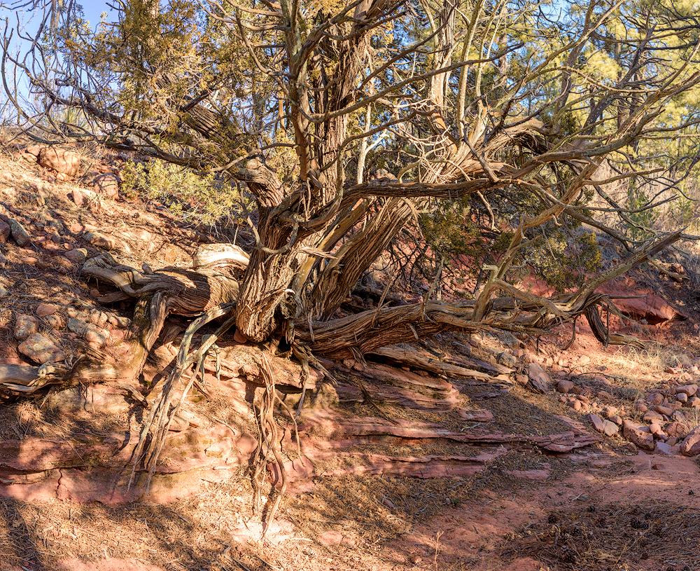 Aiken Canyon Preserve Hiking Trail