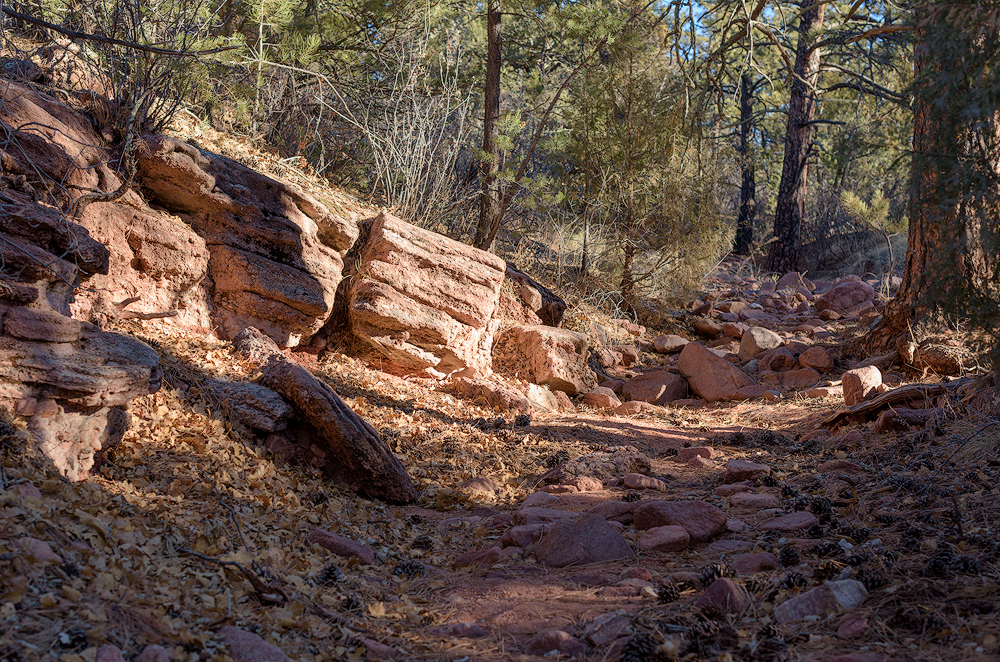 Part of the trail passing along the dry creek bed
